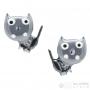Boucles chats gris